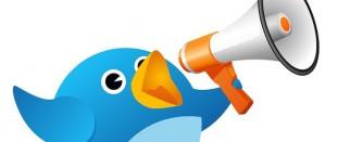 Голосящий Твиттер