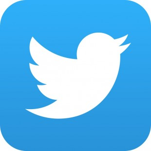 Лого Твиттер