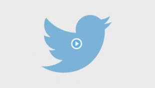 Как скачать видео с твиттер
