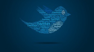 твиттер1